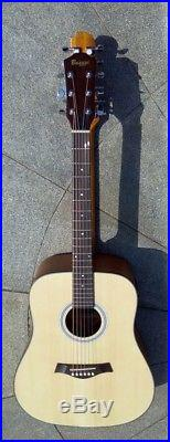 12/6 String 2 Sides, double neck, Acoustic/Electric Busuyi Guitar
