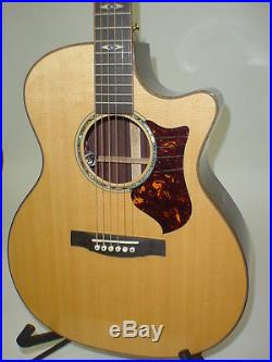 Martin GPCPA1 Performing Artist Series Acoustic Electric Guitar