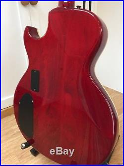 Washburn SBF-80 electric acoustic guitar (electro acoustic)